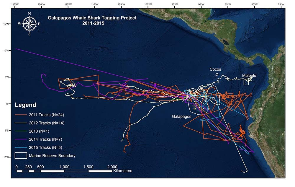 Projects, Whale Shark Tracks 2011-2015 © GWSP