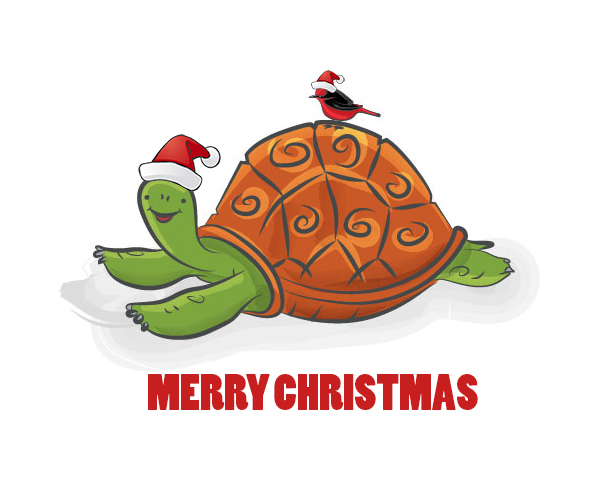 Galapagos tortoise Christmas card design