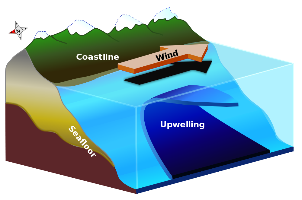 Upwelling diagram