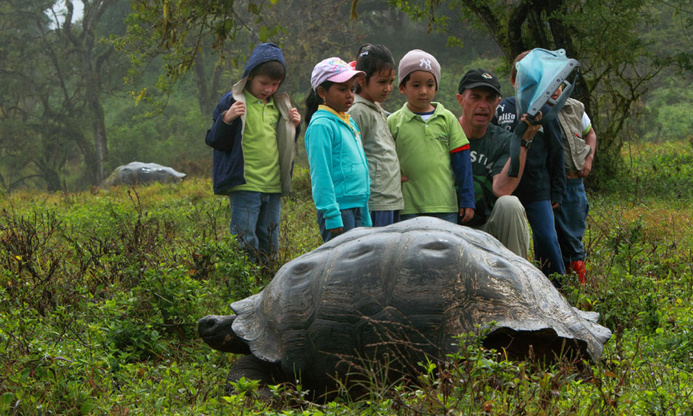 Projects, Giant Tortoise Education © Christian Ziegler