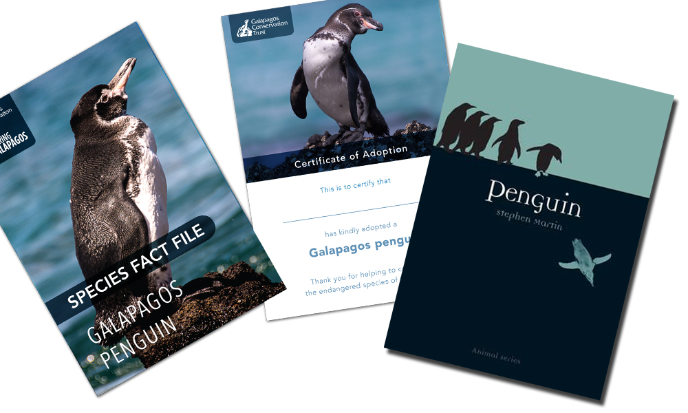 Adoptions, Penguin Adoption Postal