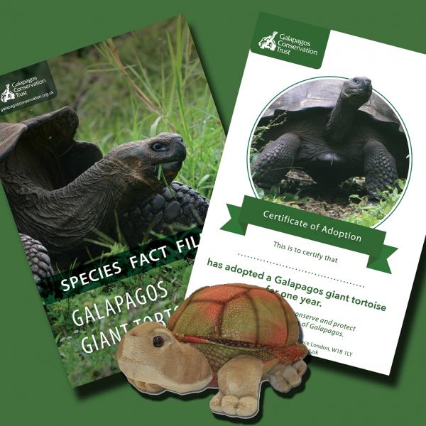 Galapagos Giant Tortoise Adoption Pack