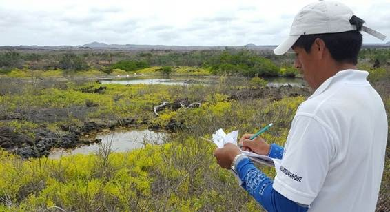 Image supplied by the Galapagos National Park