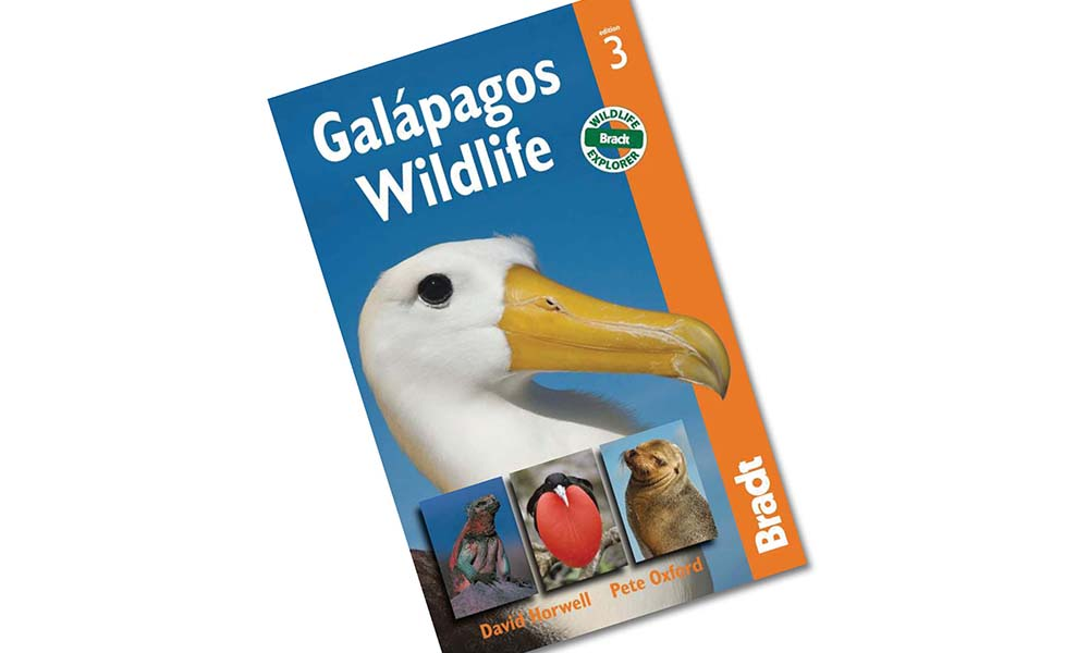 Galapagos Wildlife Brandt Guides