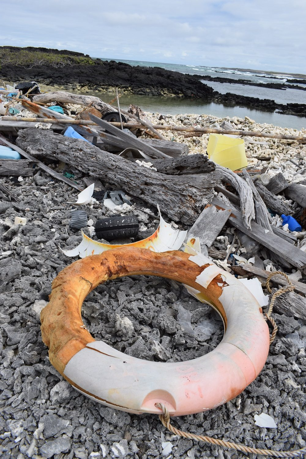 There are growing concerns about plastic pollution in Galapagos © Andy Donnelly/GCT