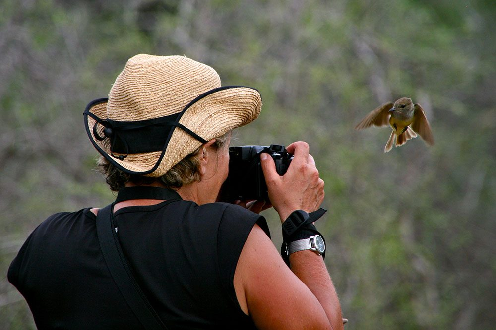 Photographer and Galapagos flycatcher © Helen Thomas