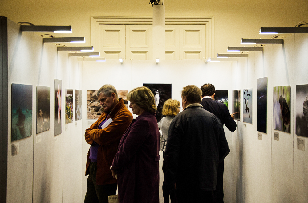 Guests Enjoying Falmouth University's Photography Exhibition © Charlie Cupples