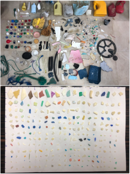 Microplastic and macroplastics collected by the Playas Sin Plasticos team