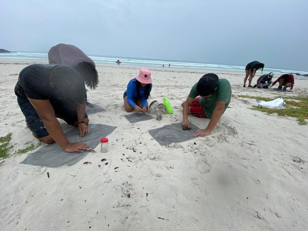 A group of young people searching for microplastics at the UNDP beach clean in February 2021 supported by Galapagos Conservation Trust © Anne Guezou