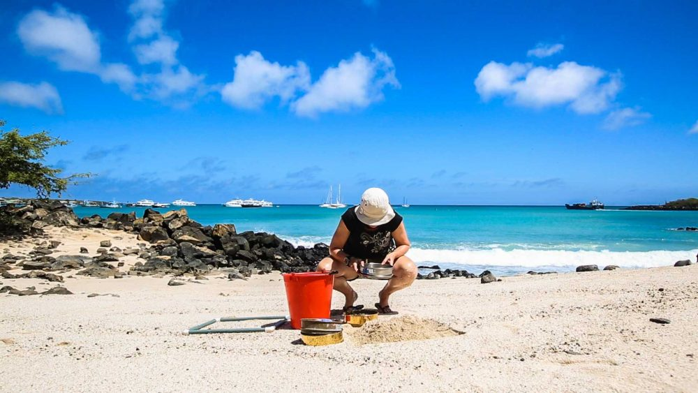 Sieving the sand to find microplastics on a beach on San Cristobal island