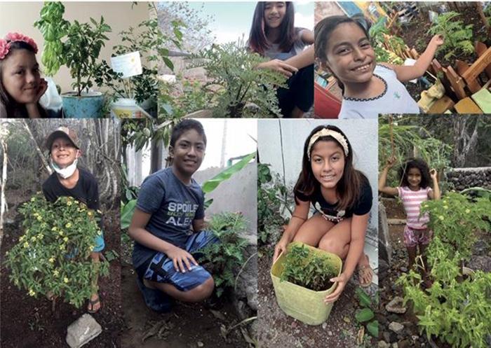 Many happy students with their Darwin's Lecocarpus plant © Hacienda Tranquila (HTSA)