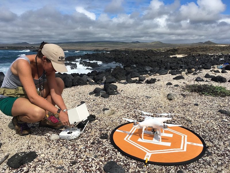 A drone pilot on a rocky beach in Galapagos checking the controls of drone, which is currently landed on a orange mat.